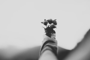 Flowers in hand Unsplash